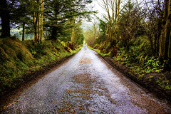 Rural Road (Bosca Fotograf) Tags: rural road countryside country side greencastle tyrone ireland northern nature photography path