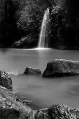 Rain Water (ptpkrause) Tags: rocky river rockriverreservation metroparks cleveland berea ohio bw longexposure water