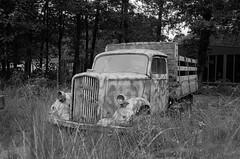 Opel Blitz (Ronald_H) Tags: opel blitz bevrijdende vleugels wings liberation leica m2 rusty wwii truck 2016 ilford fp4 diafine best netherlands war museum
