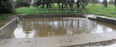 Rubbish trap pond (troggonk) Tags: ginnderra creek act sept 2016 ngunnawal gungahlin water erosion maintenance