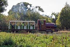 IMG_3285 (Hampton & Kempton Waterworks Railway.) Tags: darent devon arrives loop