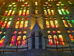 The stained glass windows of La Sagrada Familia, Barcelona (jackfre 2) Tags: spain barcelona sagradafamilia church gaudi joanvilaigrau stainedglasswindows colours catalunya light