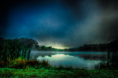 """""""Only Time Can Hear Silence"""" (Melissa June Daniels) Tags: melissajdaniels melissajunedaniels melissajdanielsphotography thenymphandthebee mjdphoto blue green landscape nature tree grass water lake mist fog advection morning sunrise dawn bluehour reflection clouds cloudsstormssunsetssunrises lonely"""