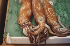 Tokyo - 46 (• CHRISTIAN •) Tags: japon japan tokyo tsukiji poisson fish marché market calmars calamari squid mollusque fruitsdemer seafood exotica nikon 50mm f14