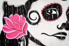 Sad eyes (dave.fergy) Tags: pink art dark texture flowers plants street people abstract mood graffiti eye bodypart on1pics adobeps masterton wellington newzealand nz