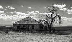 House with Shade Tree (unknown quantity) Tags: clouds deadtrees fence horizon mountains haze pasture shadows monochrome brokenroof unpaintedwood weathered cloudsstormssunsetssunrises blackandwhite abandonedhouse desolate infrared