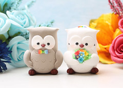Cute Owl wedding cake toppers rainbow (PassionArte) Tags: owl gufo cake toppers bride groom ivory white tan brown gray grey purple teal green red rainbow names handmade etsy personalized unique cute country rustic funny elegant custom bouquet bridal gift anniversary