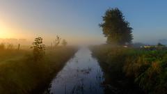 Misty sunrise in Engelbert (koos.dewit) Tags: engelbert fuji fujixe2 fujifilm fujinonxf1024mm groningen holland koosdewit koosdewitnl thenetherlands landscape mist misty sunrise tree water