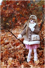 The falling leaves of red and gold (sherimi-chan) Tags: dollfiedream dds mariko volks dd doll dolls