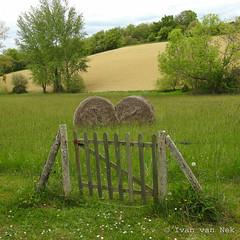 The meadow starts at the end of the garden... (Ivan van Nek) Tags: pguilhan hautegaronne nikonp900 p900 nikoncoolpixp900 midipyrnes 31 meadow field spring printemps lente fence tuinhek