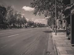 North Terrace, Adelaide (Anthony's Olympus Adventures) Tags: adelaide adelaidecbd downtown southaustralia sa australia city cityscape streetscape northterrace blackandwhite blackwhite grayscale postprocessing editing cityview road street avenue thoroughfare effect