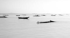 _2046020-1 (wernkro) Tags: kaladan flus sw myanmar burma birma krokor