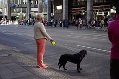 2015 (ott1004) Tags: berlinmarathon2015  eliudkipchoge  eliudkiptanui kenya dog hund marathonwithdogs  potsdamerplatz leipzigerstrase
