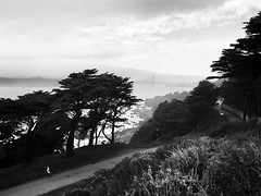 Lands End (gambа) Tags: bridge goldengate sfo sanfrancisco blackandwhite bw landsend