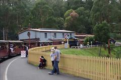 IMGP4998.JPG (Steve Guess) Tags: copyright train railway australia melbourne victoria lakeside steam dandenong billy smg emerald belgrave menziescreek puffing steveguess