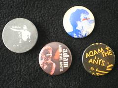 VINTAGE ANTZ BADGES (psychocandy65) Tags: music adam rock punk pin ant badge ants button memorabilia adamant adamandtheants