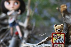 Oh Happy Days! (Voodoolady ) Tags: bear lunch dolls eating full tummy thief blythe lunchbox custom fonzie thefonz keenan swiper mariuka