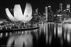 singapore bw night (~kenlwc) Tags: artsciencemuseum singapore reflection night nite bw mono monochrome building architecture leica water sea 35mm summilux35mmasph leicam9p m9p photography city urban life landscape travel kenlwc kenleung