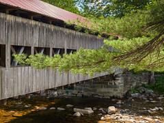 Sweeping pine. Albany Covered Bridge (Tim Ravenscroft) Tags: pine branches albany covered bridge whitemountains newhampshire nh usa