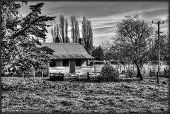 Canterbury Cottage (kmacnz) Tags: blackandwhite bw derelict derelicthouse decaying deserted hdr cottage