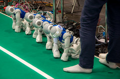 IMGP7297.jpg (Ingo Scholtz) Tags: fusball juli2016 juni2016 leipzig robocup2016 robocup roboter robots soccer