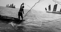 @China  fisherman (Solar ikon) Tags: 50mm leicasummicronm50mmf2 rangefinder   china blackandwhite fisherman monochrome m leica leicam9