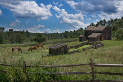 Grazing Horses (Trotter Jay) Tags: horses field barn grazing sky splitrailfence sceniclandscape scenicnewengland sonynex7
