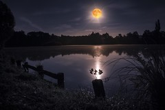 In the glow of the Red moon (frantiekl) Tags: night nightsky moon redmoon sky pond water summer august flower darkness bright landscape bohemia
