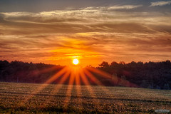 Sunrise after a star party (AstroGuiGeek) Tags: hdr hdrphotography sun sunrise soleil leverdusoleil paysages sarthe france landscapes crpuscule rayondesoleil sunbeam sunrays starparty canoneos600d canonphotography eos600d t3i 600d rebelt3i