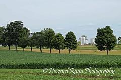Pennsylvania Countryside (230) (Framemaker 2014) Tags: farm field meadow amish country washingtonville pennsylvania montour county united states america barn silo fields crops