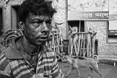 Portrait of a porter @ Kumartuli, Kolkata (Rajib Singha) Tags: travel street people portrait outdoor work environment lanes interestingness flickriver nikond200 mfnikkor20mmf35aislens kumartuli kolkata westbengal india