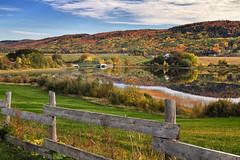 Couleurs d'automne  a Hebertville (gaudreaultnormand) Tags: automne bridge canada champ hebertville jaune lackenogamichiche lacsaintjean lake leefilter oat petitpontvert quebec