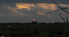 Lever du jour sur la Camargue (Elyane11) Tags: leverdujour soleil camargue ciel nuages saariysqualitypictures