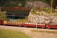 Berekvam H0  (17) (Rinus H0) Tags: modelspoorexpo expo 2016 leuven belgi belgium belgique louvain mstdemaaslijn berekvam h0 187 schaal gauge scale norway norwegian modeltreinen modelrailway modelleisenbahn modelspoor modeltrains trains cars trucks wagon nature scenery mountain
