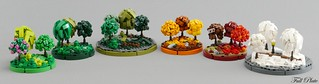 Micro Seasons