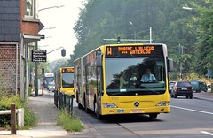 6220 W (brossel 8260) Tags: belgique bus tec brabant wallon