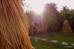 DSC06486 (Peripatete) Tags: bali canggu resort beach desaseni nature flowers fullmoon culture tradition architecture food
