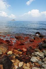 l'isola Palmaiola dall'elba. (LucaBertolotti) Tags: elba isoladelba isola toscana italia italy calaseregola riomarina ruggine rust minerals minerali
