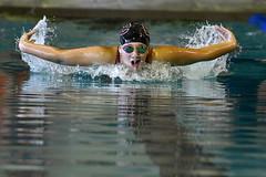 BCswimming-br-092416_0089 (newspaper_guy Mike Orazzi) Tags: swimming swimmer 70200mmf28gvrii 70200mmf28gvr pool giamattipool bristol bristolcentralhighschool d500 nikon nikond500 swim water indoorpool