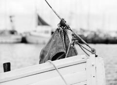 Dragr: detalje af fiskekutter (holtelars) Tags: pentax pentax645 645 645n 6x45 smcpentaxfa 200mm f40 120film 120 film foma fomapan fomapan100 fomapan100classic 100iso mediumformat analog analogue blackandwhite classicblackwhite bw monochrome filmforever filmphotography xtol homeprocessing larsholte denmark danmark hrsholmfotoklub dragr havn marina fototur fishingboat fishingcutter