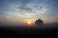 Sonneaufgang (fotio14) Tags: sonne sonnenaufgang morgen wiese himmel nebel