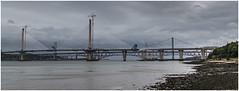 Forth Bridges No47 - 24-09-16 (Jistfoties) Tags: forthbridges queensferrycrossing pictorialrecord thebridges forth civilengineering construction bridge