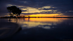 Flood waters - DSC07190 (cleansurf2) Tags: landscape waterscape widescreen 16x9 4k wallpaper 3840 emount sonyilce6000 a6000 australia flood water longexposure sunset dark smooth lone tree blue black orange yellow color colour