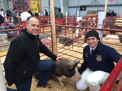 Salinas Valley Fair Animal Auction Winner