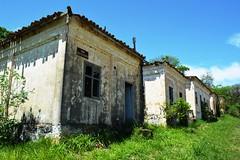 Conjunto de casas abandonadas sofrendo a ao do tempo - FloNa Ipanema - Iper (marcusviniciusdelimaoliveira) Tags: casa construo mato tempo clima histria morada