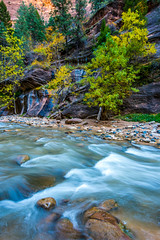 To the Zion Narrows! Nikon D810 Fine Art Zion National Park Autumn Hike! Dr. Elliot McGucken Fine Art Landscape Photography! (45SURF Hero's Odyssey Mythology Landscapes & Godde) Tags: to zion narrows nikon d810 fine art national park autumn hike dr elliot mcgucken landscape photography landscapes nature arts natural bryce canyonautumn winter hdr majestic leaves long exposures