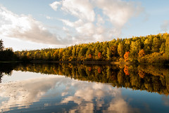 Hello Autumn (modestmoze) Tags: mirror lake water waves 2016 calm nature naturephotograph outside outdoors day treeline trees forest colorful beautiful 500px september autumn clouds sky reflection shadows black white blue green brown yellow red orange shore lithuania