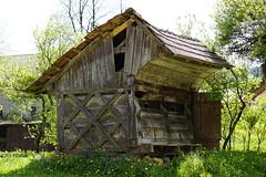 _DSC6437 (Nonesmanneslond) Tags: slovenia slovene kitnivhr