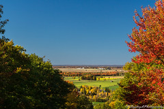 Shinning Fall (Saydryk Photography) Tags: fall automne autumn feuille leaf arbre tree ciel sky bleu blu orange rouge red vert green sapin pine rigaud mount mont horizon paysage landscape