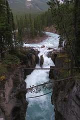 Sunwapta Falls (Larry Myhre) Tags: sunwapta falls waterfall jaspernationalpark alberta canada bcalbertasept2016
